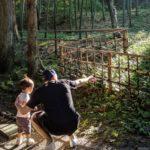 1歳9カ月の息子連れ岩手旅行2日目(岩鋳→宮澤賢治童話村→中尊寺)